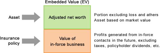 Lifenet Insurance Company Investor Relations Embedded Value Ev